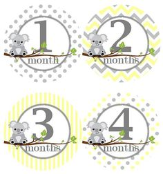 Hey, I found this really awesome Etsy listing at https://www.etsy.com/listing/188878334/baby-monthly-milestone-growth-stickers