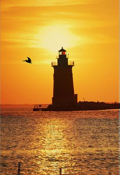 Sunset Over Delaware Bay. Beautiful Sunset, Beautiful Places, Delaware Bay, Lighthouse Pictures, Beacon Of Light, Light Of The World, Windmill, National Parks, Scenery