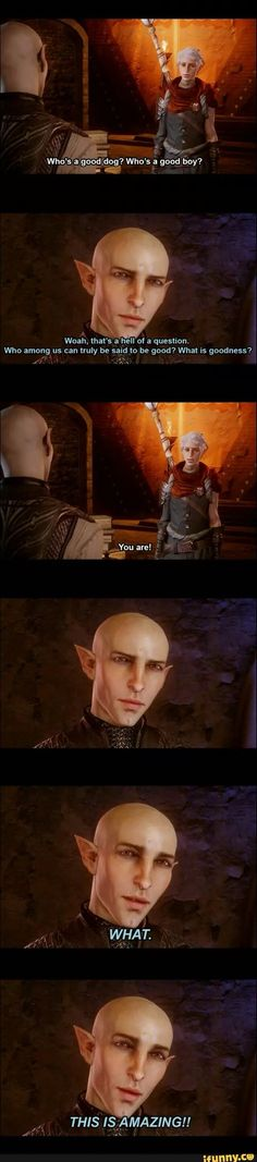 So Solas is a dog now?