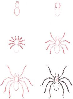 Learn to draw: Spider Art Drawings For Kids, Pencil Art Drawings, Art Drawings Sketches, Drawing For Kids, Easy Drawings, Drawing Lessons, Drawing Techniques, Art Lessons, Spider Drawing