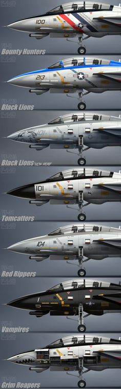 F-14 Tomcat squadrons. Very COOL!!