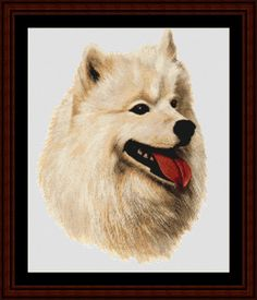 Samoyed - Cross Stitch Collectibles fine art counted cross stitch pattern