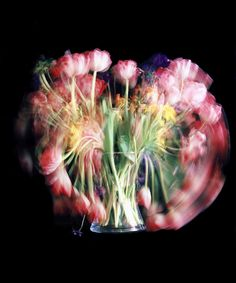 The serie Unstill Life, by the photographerChris Spackman,seeks to use continuous exposures of up to 3 weeks as a means to illustrate transition and the nature of time.