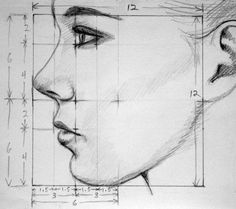 Calculs dessin visage profile