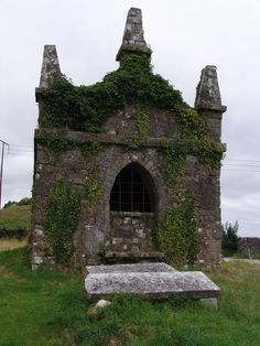 Ruined mausoleum and graves, Carbury, Co. Kildare
