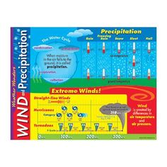 Trend Enterprises Learning Weather Wonders Chart (Set of 3)