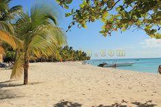 Заметки одного туриста о том, что можно посмотреть в Доминиканской республике. Необитаемый остров Каталинита, лобстеры, поиски морских звезд и другие приключения Шурика