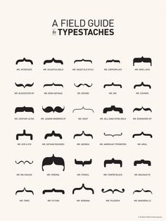 field guide to typestaches