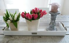 Digital Magazine, Planter Pots, Vase, Home Decor, Gold Plated Jewellery, Decoration Home, Room Decor, Vases, Home Interior Design