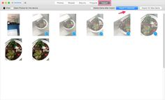 How to Copy Photos from iPad to PC with 5 Best Solutions?