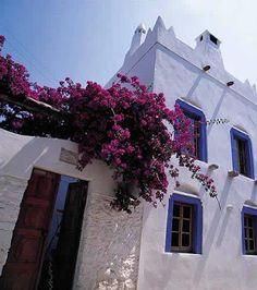 Begonvilli Bodrum Evleri, Bodrum Bodrum. Beyaz kireçli evler. Turkey