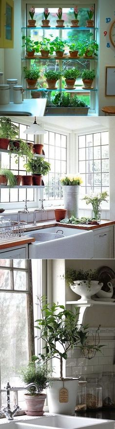 Do you grow herbsin your kitchen? One of the most effective winter-blues remedies I've tried so far was creating my own window herb garden. There is something so cheerfully wonderful about tons of greenery thatspreads the most divine scent around the whole flat.