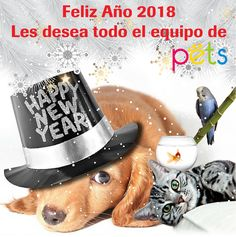 Feliz Año 2018 les desea el equipo de Pets World Magazine   #PetsWorldMagazine #RevistaDeMascotas #Panama #Mascotas #MascotasPanama #MascotasPty #PetsMagazine #MascotasAdorables #FelizAñoNuevo
