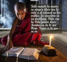 Meditación Bks Iyengar, Spiritual Messages, Ashtanga Yoga, Dalai Lama, Osho, Spiritual Awakening, Karma, Reiki, Wise Words