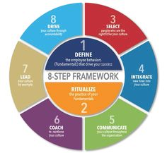 friedman-8-step-framework