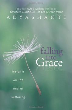 Falling into Grace: Insights on the End of Suffering:Amazon:Books