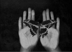 butterfly, dark, hands, the romanova Butterfly Effect, Butterfly Flowers, Butterflies, Monochrome Photography, Fine Art Photography, Kiss Of Death, Through The Looking Glass, Light In The Dark, Hands