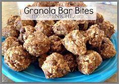 Granola Bar Bites Recipe - Mother's Niche