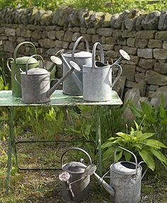 A collection of vintage watering cans . watering cans cans Metal Watering Can, Watering Cans, Garden Gates, Garden Tools, Garden Sheds, Vintage Gardening, Potting Sheds, Dose, Water Garden