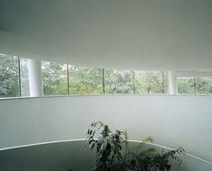 Budova vily na Kamennej je postavená tak, aby reagovala na slnko. Panoramatické kruhové okno prijíma svetlo od východu až do západu slnka. #rodinnydom #stavba #svojpomocne #stavebnymaterial #ytong #zdravebyvanie #vysnivanydom #modernydom #staviamedom #byvanie #rodinnebyvanie #modernydomov #architektura #dizajn #dizajninterieru #atelier Windows, Plants, Atelier, Plant, Ramen, Planets, Window