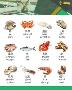 Learn Chinese, English, Russian & German vocabulary fast in a fun, easy, efficient and entertaining way. Basic Chinese, Chinese English, Learn Chinese, German Language Learning, Learn A New Language, Foreign Language, French Language, Chinese Lessons, French Lessons