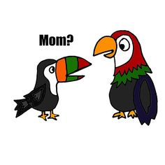 Cool Funny Baby Toucan and Parrot