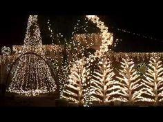 Christmas Lights in Houston 2