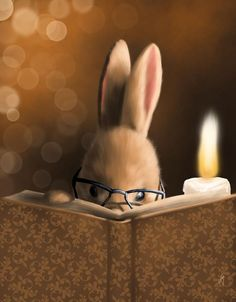 A good mystery engages you from the start 👀 📖 👀 . A Mystery Story by Veronica Minozzi I Love Books, Good Books, My Books, Will Terry, Lapin Art, Mystery Stories, Storybook Cottage, Photo Images, Reading Art