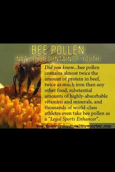 Bee pollen-almost double the amt of protein & iron in beef, absorbable high volumes of vitamins & minterals.
