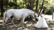 white horse and a bride...magical!   CHECK OUT MORE IDEAS AT WEDDINGPINS.NET   #weddings #weddinginspiration #inspirational