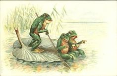 Frogs on a Lilly Pad