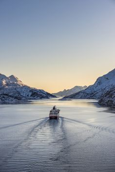 Northern Lights Norway Cruise - My dream Winter cruise! Come see why... #hurtigruten #sp #travel