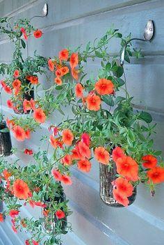 suporte de plantas feito com talheres ....adorei a ideia!