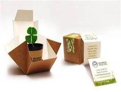 carton packaging