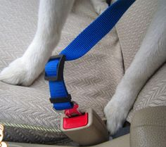 Travel safe seat belt for dogs #dogleash