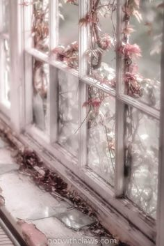 Photograph Broken window with pink flower in soft focus by Emma Theobald
