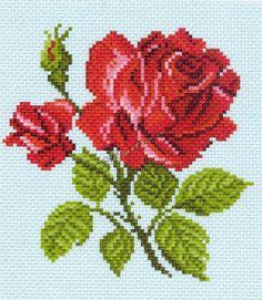 Community wall photos - My site Cross Stitch Bird, Cross Stitch Flowers, Cross Stitch Designs, Cross Stitching, Cross Stitch Patterns, Rose Embroidery, Embroidery Patterns Free, Cross Stitch Embroidery, Canvas Template