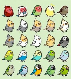 I really like this group of birds. We used to keep birds in our home and I really miss them, sometimes. . . .  ^..^
