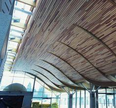 hunter douglas curved wood wall - Google Search