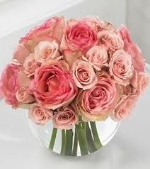 Blush Roses In a Fishbowl