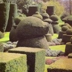 The Topiary Garden at Hasley.