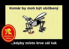 Myggen kunne vere popular,hvis han ville suge fett istedenfor blod...