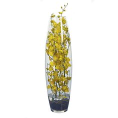 Bloom'd medium belly vase