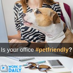 8 Ways You're Being shut out of the Hiring Process. Learn more with Work It Daily! Create A Hashtag, Office Dog, Great Place To Work, Employer Branding, Hiring Process, Job Posting, Working Dogs, Social Platform, Personal Branding