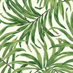 Slim blades of color reach across this pattern creating a tangle of tropical leaves, some in silhouette, with shafts of light peeking through dense jungle. The design is over scale and some versions have metallic accents.