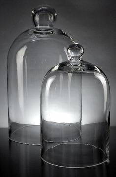 "Set of 2 Glass Cloche Bell Jars (16"" &11.5"" ) $25  from save on crafts. I'd grow spring onions under it so the cats can't get to them, plus they would look so cute there."