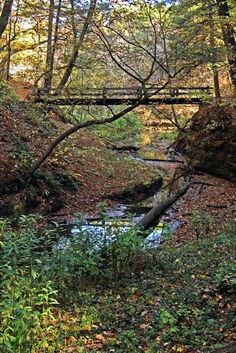 Bridge and nature, Starved Rock State Park, Illinois