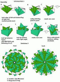stefalotus diagrams