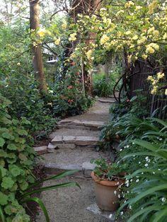 Wood, Garden, Plants, Garten, Woodwind Instrument, Timber Wood, Wood Planks, Gardens, Trees