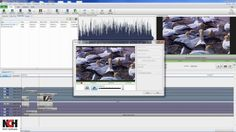 Videopad video editing software how to add effects this videopad video editing software overview tutorial ccuart Gallery